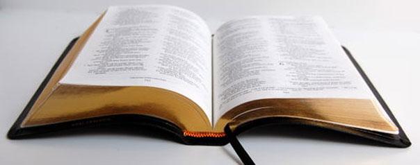 Las profecías sobre Muhammad En la Biblia